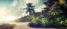 Resultado de imagem para ilhas