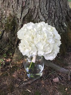 Loved it! Pinned it! A Blooming Envy Design! Sentry World, Stevens Point, WI. White Hydrangea Bouquets.