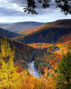 Worlds End State Park in Forksville, PA