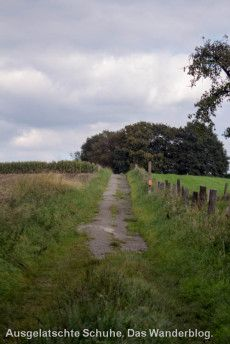 Leichlinger Obstweg Oder: Warum die Blütenstadt 'Blütenstadt' heißt. http://ausgelatschte-schuhe.de/bergischer-streifzug-obstweg/