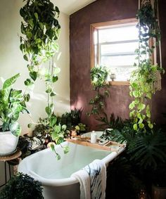 If you are fans of a fresh and colorful interior decor, using indoor plants to decorate your interior can be one of easiest ways to make a home feel more lived-in and relaxed. Adding large indoor p… Bathroom Plants, Garden Bathroom, Bathrooms With Plants, Room With Plants, Home And Deco, Bathroom Inspiration, Bathroom Ideas, Bathroom Goals, Bathroom Colors