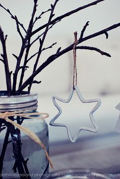 Make clay star ornaments and hang from branches in a mason jar