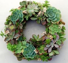WANT, Want, want....ABC das Suculentas; great succulent wreaths!