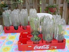 2 liter bottle garden | ... litter clear plastic soda pop bottles for years. Here is how I make