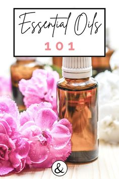 We love essential oils! Get the scoop on essential oils for beginners, safe essential oils, how to use essential oils and how to dilute essential oils. Diluting Essential Oils, Are Essential Oils Safe, Natural Life, Natural Health, Detox Your Home, What To Use, Body Systems, Beauty Recipe, Natural Home Remedies