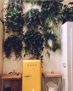 Bohemian plant chic! Lush plants with cute yellow Smeg fridge!