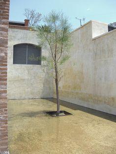Inspiration: singular tree from CASA in Oaxaca. Condo, Garage Doors, Outdoor Decor, Modern, Projects, Inspiration, Home Decor, Oaxaca, Log Projects