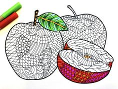 Apples PDF Zentangle Coloring Page