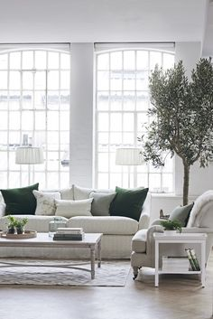 Fresh living room in spring time Fresh Living Room, Living Room Lounge, New Living Room, Living Room Interior, Living Room Decor, Neptune Home, House Plants Decor, Modern Lounge, Lounge Decor