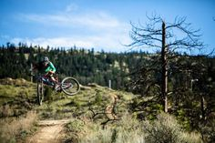Whipped Friday #pod with Bas van Steenbergen
