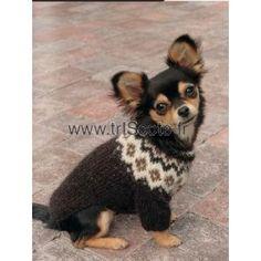 manteau pour chien au tricot v tements pour chien pinterest tricot et crochet. Black Bedroom Furniture Sets. Home Design Ideas