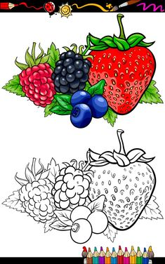 Vegetable Coloring Pages, Fruit Coloring Pages, Coloring Book Pages, Coloring Pages For Kids, Free Coloring, Art Drawings For Kids, Drawing For Kids, Art For Kids, Basket Drawing