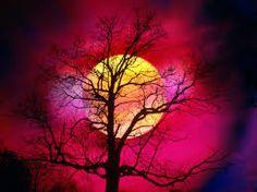 Colori notturni...inaspettatamente i rossi e i gialli
