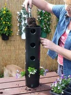 large pvc pipe with holes, filled with dirt