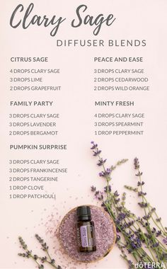 Essential Oils and You Doterra clary sage essential oil diffuser recipes. Diffuser blends for clary Clary Sage Essential Oil, Essential Oils Guide, Patchouli Essential Oil, Essential Oil Diffuser Blends, Doterra Essential Oils, Clary Sage Doterra, Doterra Diffuser, Cedarwood Essential Oil Uses, Clary Sage Uses