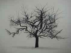 """Samuel Jan, Tree in Winter, 16""""x 20"""" charcoal framed $850"""