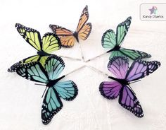 i want these  they are cute    Butterfly hair clip Choose your favorite color by KandyDisenos, €6.00