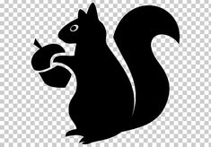 Squirrel Silhouette, Cartoon Silhouette, Silhouette Clip Art, Animal Silhouette, Silhouette Images, Squirrel Clipart, Squirrel Art, Black Squirrel, Squirrel Coloring Page