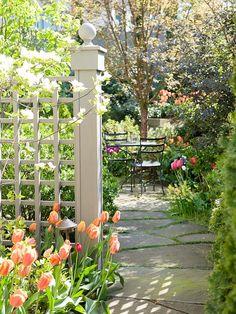 Ideas para mejorar su patio, adecuarlo a sus necesidades y que así se convierta en su refugio perfecto.