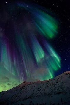 aurora lights by therese
