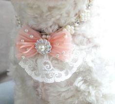 Vintage dog necklace, pearl Rhinestone collar,  flower necklace, ivory collar, ribbon collar, wedding dog accessory, wedding/ball dog collar on Etsy, $49.00