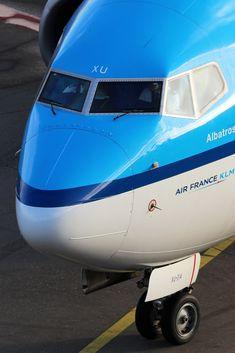 "KLM Royal Dutch Airlines Boeing 737 ""Albatros"""