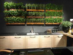 Indoor kitchen garden by http://www.snaidero-usa.com/