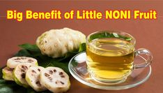 Outrageous Top Health Benefits Of Noni Fruit Tips. Noni fruit has a very high concentration of proxeronine which are changed into xeronine when taken to the body. It's plenty of health gains and so are great for your body and health. Noni Juice Benefits, Health Benefits, Bon Sport, Juice For Skin, Jugo Natural, Dog Food Recipes, Cooking Recipes, Dog Food Brands, Juicing For Health