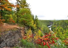Janice Saunders Studio - Spectacular autumn vista overlooking the Barron Canyon in Algonquin Park.