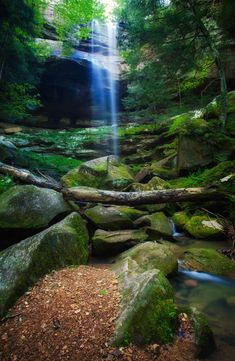 Whispering Light - Waterfall in Long Hollow in Hocking Hills Ohio by Jim Crotty
