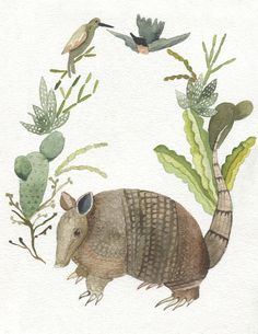 Armadillo with Desert Cactus and Birds by Tennyson Tippy