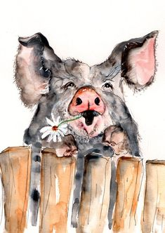 pigs art - Pig Illustration Painting Pig Watercolor Art Print set in mount Pig, farm, animal,mode Animal Paintings, Animal Drawings, Art Drawings, Farm Paintings, Country Paintings, Animals Watercolor, Watercolor Art, Painting & Drawing, Pig Illustration