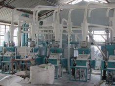 chickpea milling machine for Algeria