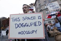 """Anthony Rubio stands with his Chihuahua Kimba behind a placard during a """" Doggupy"""" event at Union Square in New York October 2, 2012. About 20 dog owners took part in the event calling for an end to inferior dog food and to demand for nutritious, real, whole food. REUTERS/Shannon Stapleton (UNITED STATES - Tags: CIVIL UNREST FOOD ANIMALS SOCIETY)"""