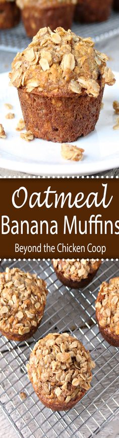 Oatmeal banana muffins are a great way to start the day! These muffins are perfect for breakfast or a midday snack. Muffins Blueberry, Banana Oatmeal Muffins, Zucchini Muffins, Healthy Banana Muffins, Banana Bread With Oats, Buckwheat Muffins, Oatmeal Cupcakes, Oatmeal Scotchies, Oatmeal Yogurt