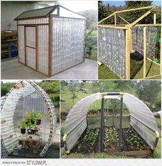 Greenhouses made from recycled plastic bottles PET