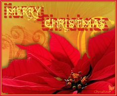 Papillon Noel - -  Tutorials PSP - - Christmas  Click on a picture to see the tutorial