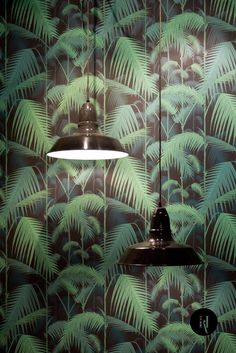 Palm Jungle by Cole & Son More
