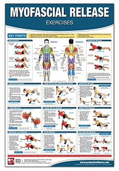 Myofascial Release Chart/Poster by Mike Jespersen http://www.amazon.com/dp/1926534794/ref=cm_sw_r_pi_dp_UDVcvb162250Z