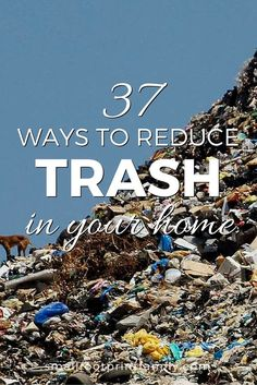 We really, really have to do something about our catastrophic amount of waste. Now. Here are 37 ways to reduce trash in your home, and save some money, too.