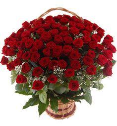 kwiaty róże czerwone - Szukaj w Google