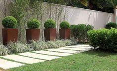 Junto ao muro, bambus-mossô, vasos com buxinhos podados e, no chão, barbas-de-serpente (Foto: Renato Corradi)
