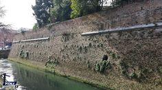 Le Mura di Treviso in degrado