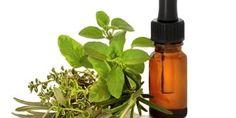Essential Oils for Endometriosis - MY ENDOMETRIOSIS SOLUTIONS   MY ENDOMETRIOSIS SOLUTIONS