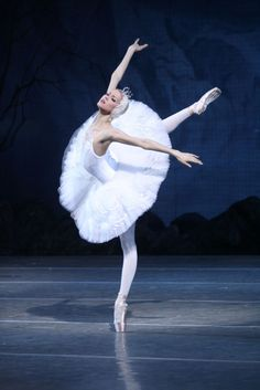 Alina Somova as Odette - Mariinsky Ballet. We were lucky enough to see Alina dance Odette/Odile when the Mariinsky came to ROH. Tutu Ballet, Ballerina Art, Ballet Art, Ballet Dancers, Ballerinas, Dance Photos, Dance Pictures, Swan Lake Costumes, Swan Lake Ballet