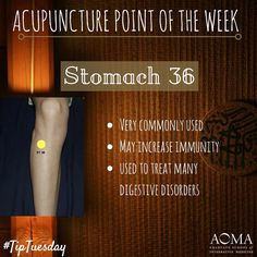 "24 Likes, 3 Comments - AOMA (@aoma_austin) on Instagram: ""#TipTuesday: #Acupuncture Poibt of the Week, Stomach 36! ☺️#integrativelife"""