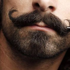 Women show stronger preferences for masculine facial characteristics while assessing men's attractiveness for short-term relationships than assessing men's attractiveness for long-term relationships. Beard And Mustache Styles, Beard No Mustache, Hair And Beard Styles, Long Hair Styles, Van Dyke Bart, Sexy Bart, Top Hairstyles, Awesome Beards, Beard Tattoo