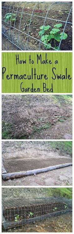 How to Build a Permaculture Swale Garden Bed~ Grow more food using less water! www.growforagecookferment.com
