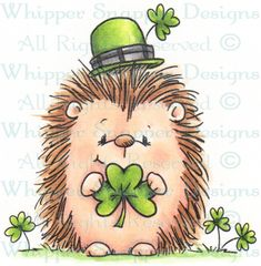 Irish Hedgehog