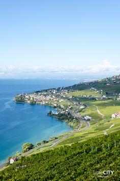 Montreux Riviera Bloggerreise - Montreux, Lavaux & Vevey mit Montreux Riviera http://littlecity.ch